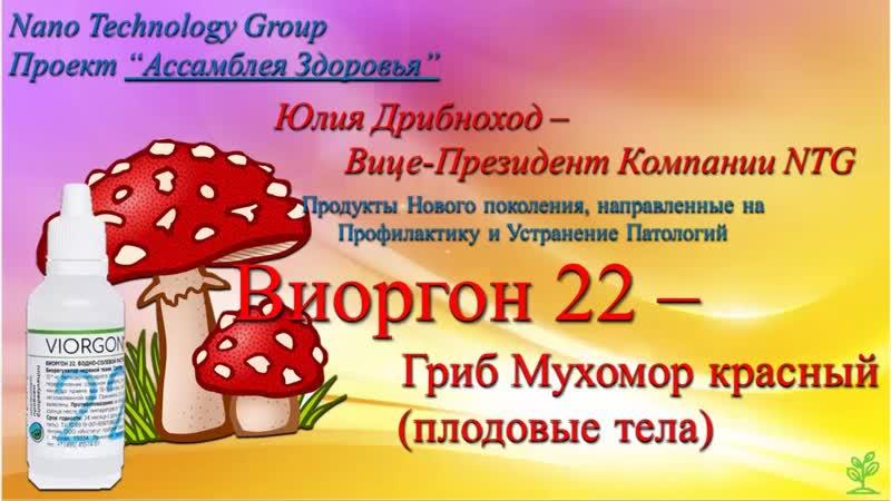 Виоргон 22 - Мухомор Красный. Грибная аптека. часть 1. Ю. Дрибноход. 01.04.2020