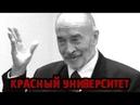 LenRu Live! КрасныйУниверситет 18.03.20 | Профессор Попов