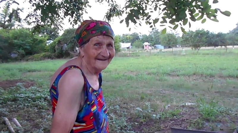 Шикарный забор из высохшего навоза в огороде у бабы Любы Погреб своими руками