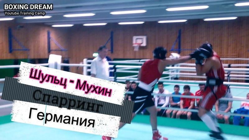 Финалист Европы против МС по боксу Спарринг 2014 год