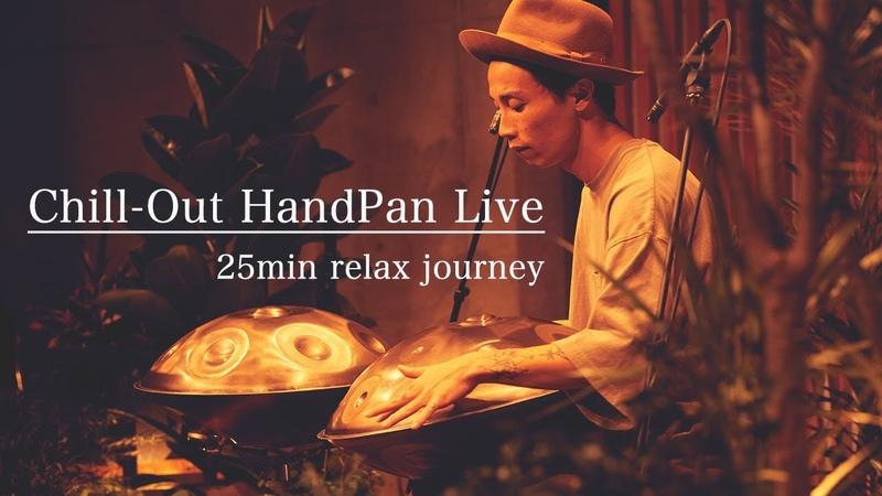 HandPan Full Live chill ambient meditative nature Live at Recital concert
