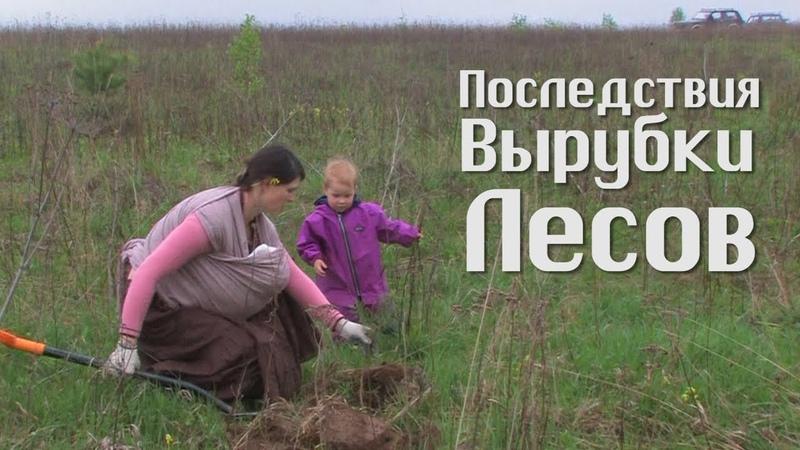 Как восстановить обмелевшие реки и плодородие почвы