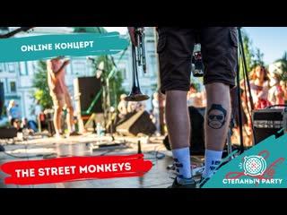 Любинский.LIFE/ Степаныч Party/ The Street Monkeys/