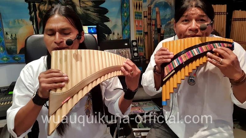 LIVE Alomia Robles El Condor Pasa Panflute Quena Instrumental LIVE
