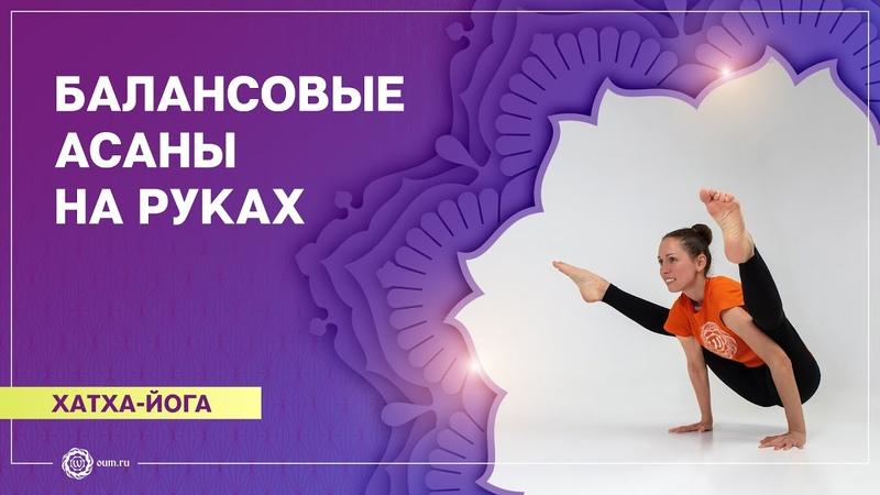 ХАТХА ЙОГА Комплекс Балансовые асаны на руках Екатерина Андросова