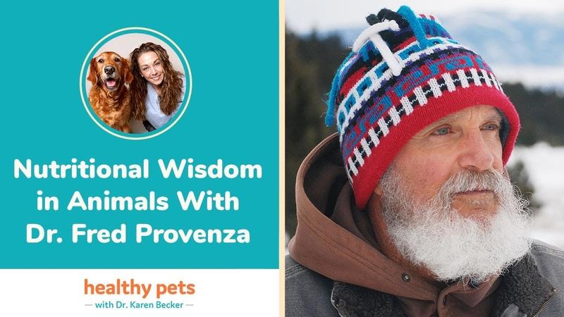 Пищевая мудрость у животных Nutritional Wisdom in Animals