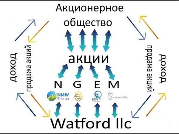 Watford LLC Watford LLC Результативность и долгосрочность надежность и легальность