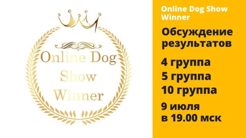 Обсуждение итогов виртуальной выставки собак 4 5 10 группы Прямой эфир
