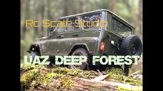 Rc scale studio model 4x4 1:8 UAZ 3151 on GAZ 66 trail steps in DEEP FOREST