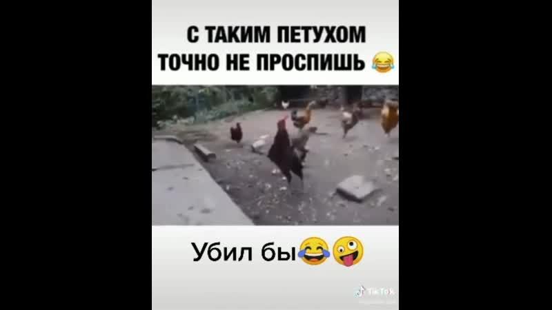 VIDEO 2020 06 29 10 31