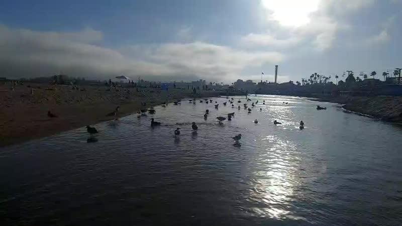 Парк отракцтонов в Санта Крузе