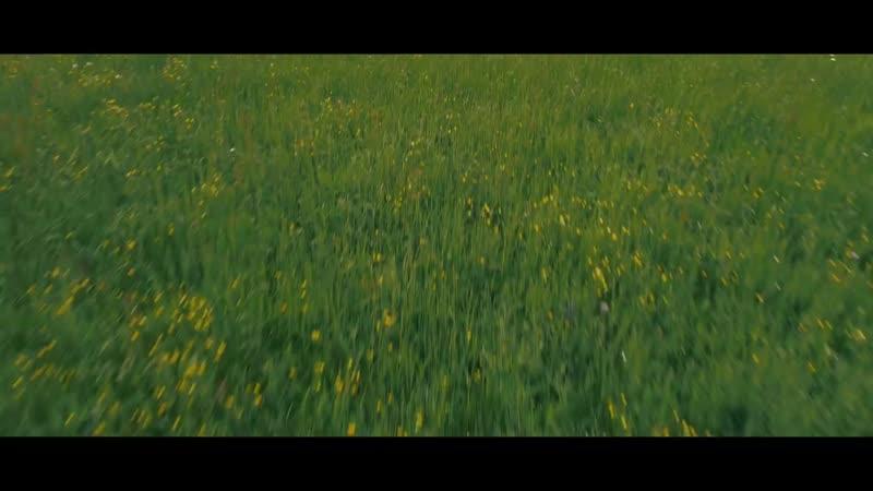 Zapre i Boys Neopisivo Official Video