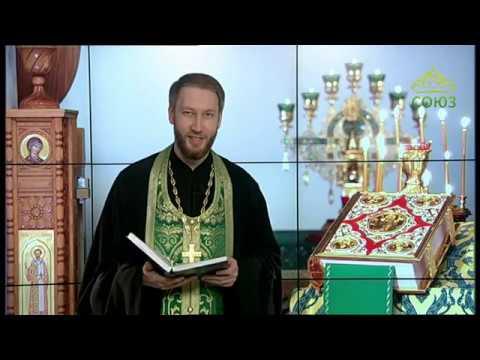 Читаем Евангелие вместе с Церковью 7 июня 2020