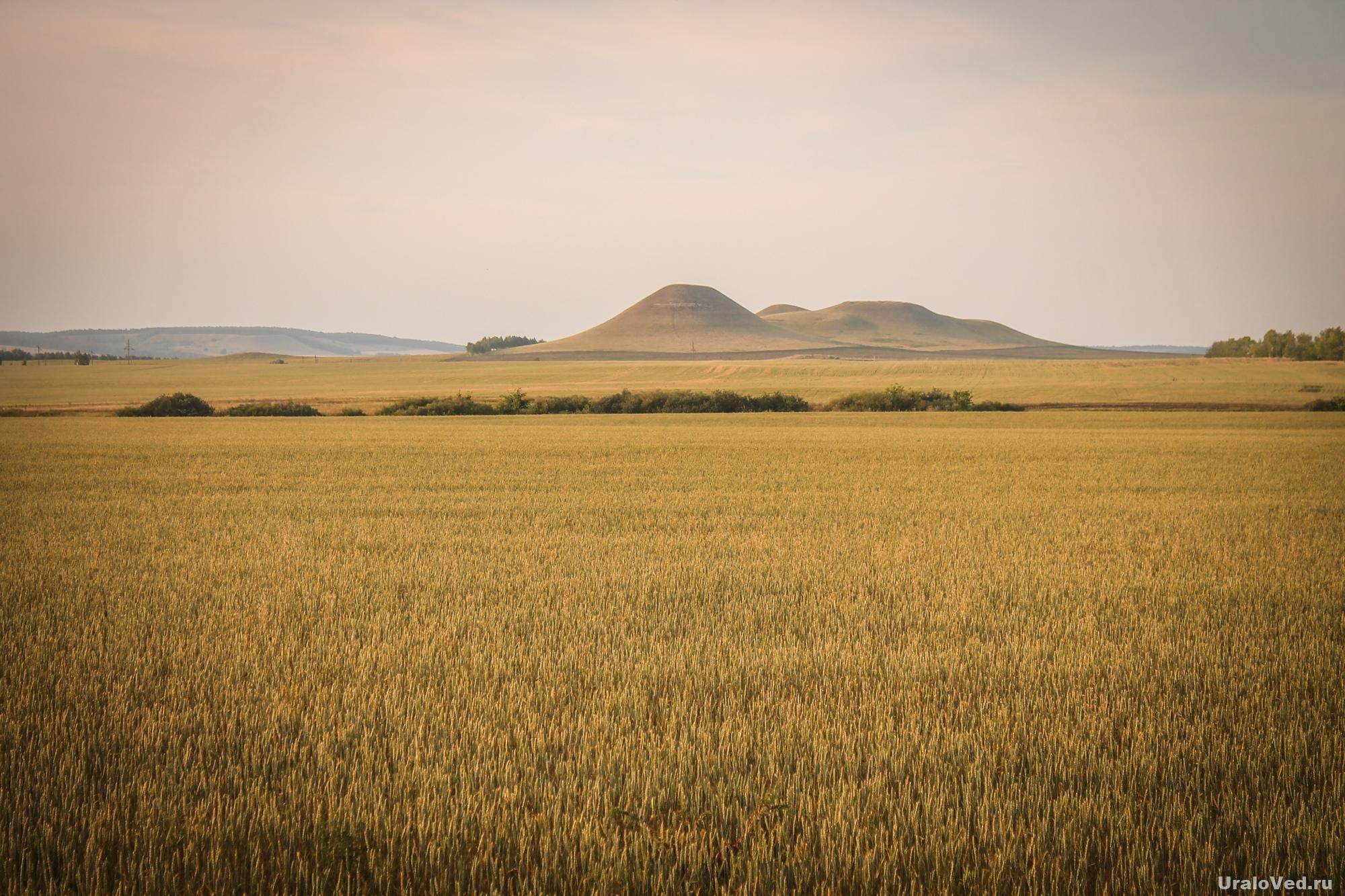 Холмы на подъезде к Раевскому