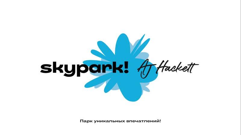 Zipline SkyPark