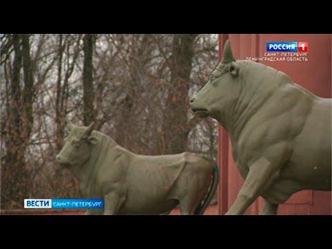 Бронзовым быкам на Московском шоссе без малого 200 лет