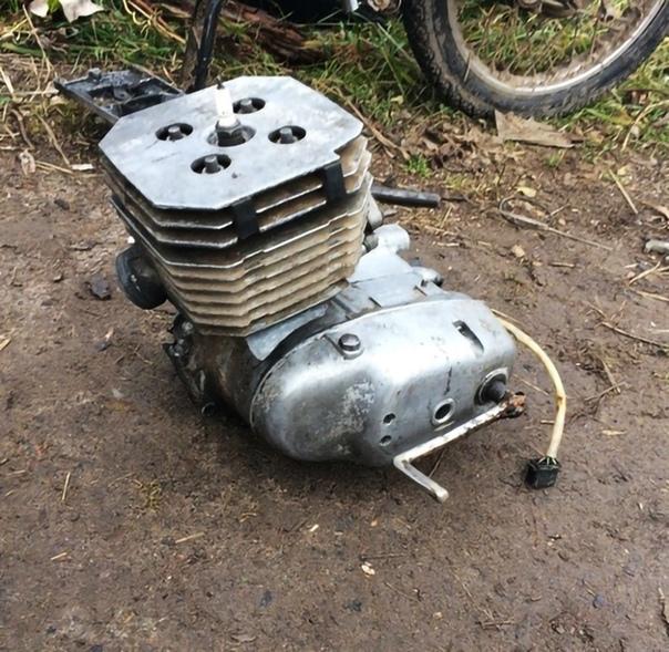 Двигатель сова картинки накачался