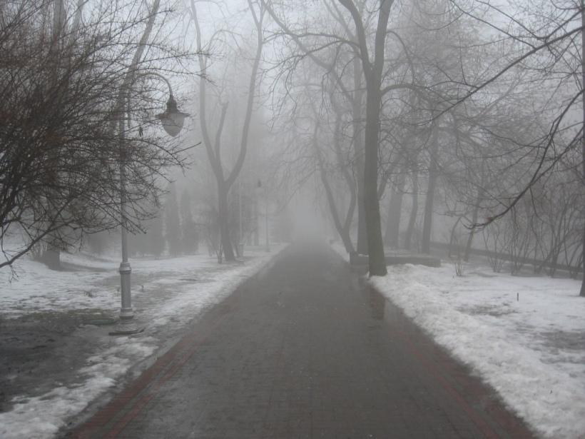В Курской области прогнозируют туман и гололедицу