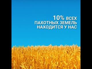 Как сохранить нашу природу и природные богатства России Видео о самом важном