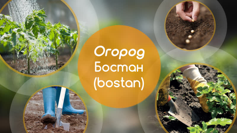 5 главных слов Огород бостан bostan
