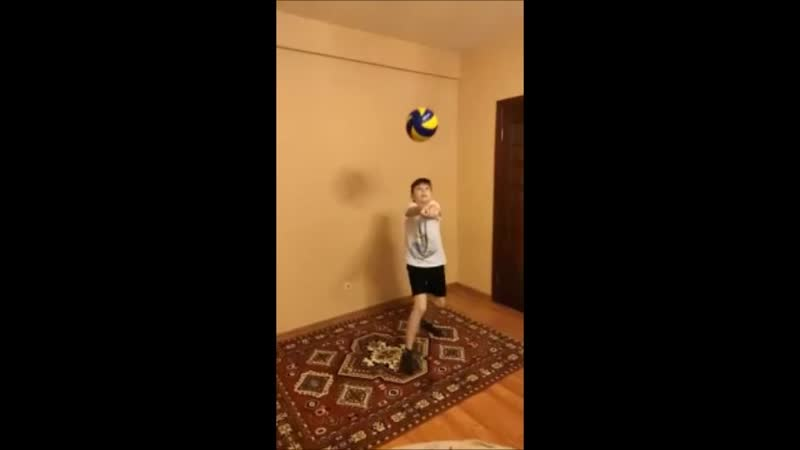 Волейбол Ценарев Николай гр СОГ