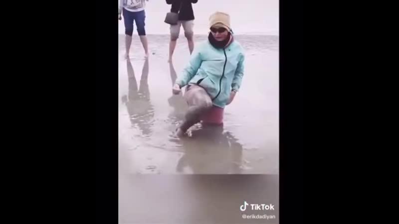 Что делать если пески начали засасывать тебя xnj ltkfnm tckb gtcrb yfxfkb pfcfcsdfnm nt z xnj ltkfnm tckb gtcrb yfxfkb pfcfcsdfn