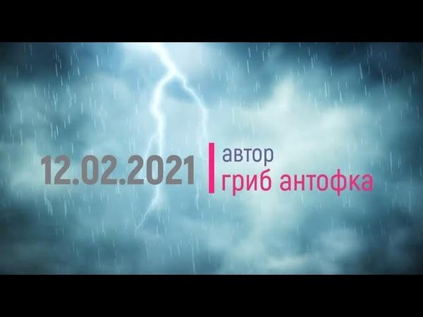 Гриб боевик Мульт класс в Коломне 8 950 793 04 37