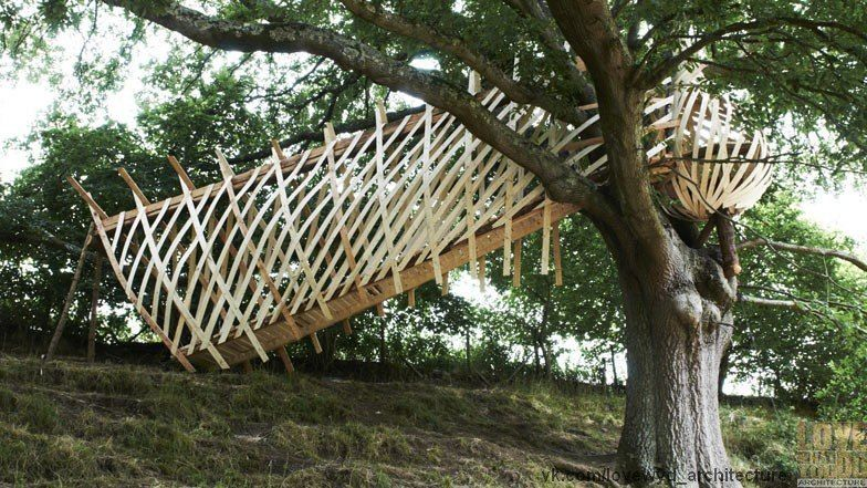Dartmoor Treehouse by Jerry Tate Architects