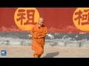 Китайское боевое искусство бацзицюань