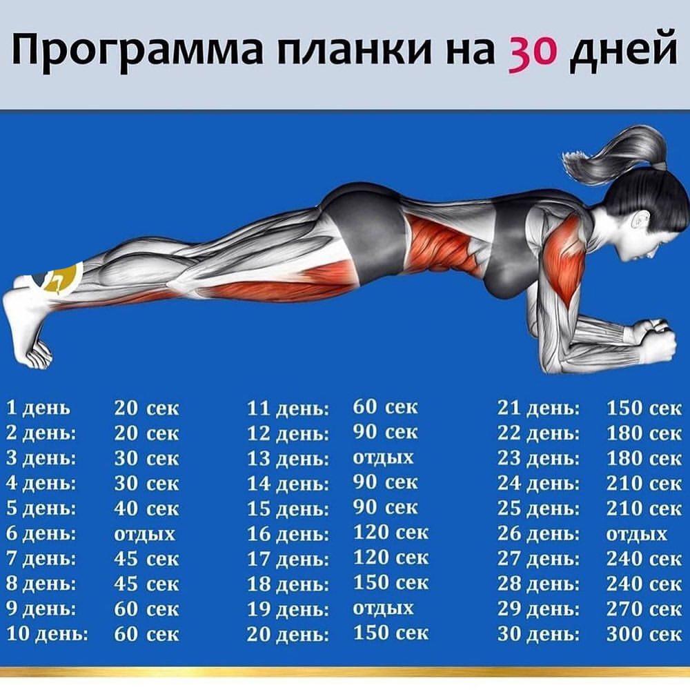 Упражнение планка считается одним из самых эффективных упражнений для прокачки мышц пресса
