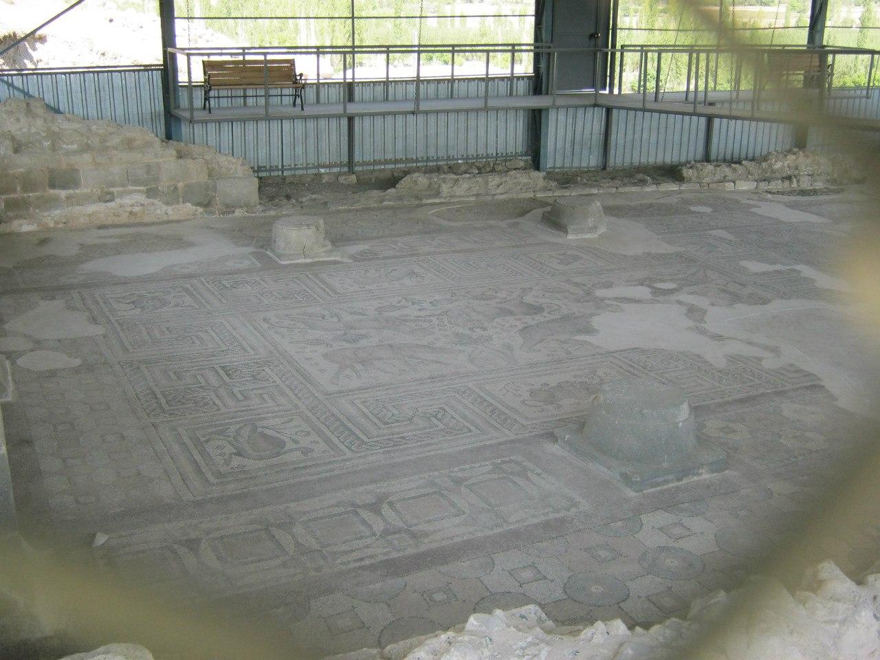 Мозаичный пол в Алтынтепе