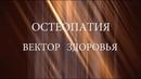 Остеопатия - вектор здоровья - документальный фильм