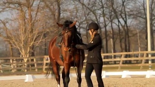 Horse & Human Academy; Training with Greetje Hakvoort