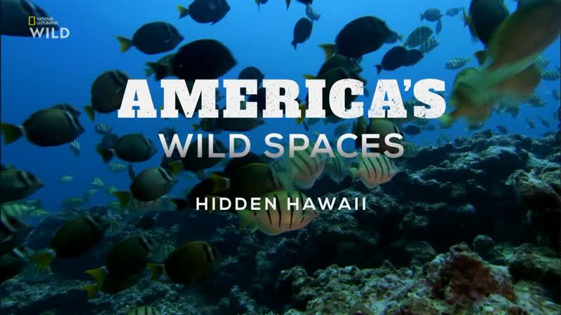 Просторы Америки Неизвестные Гавайи 4 серия из 6 2018 HD 1080