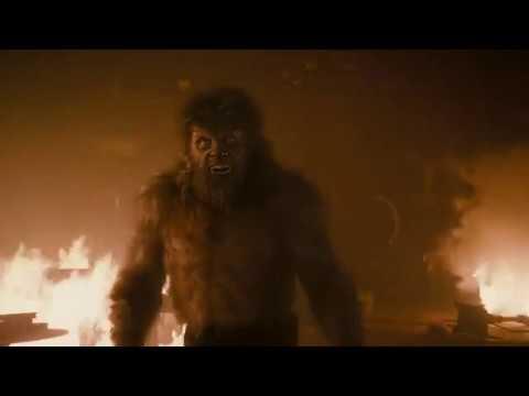 Человек Волк против Человека Волка в фильме Человек Волк
