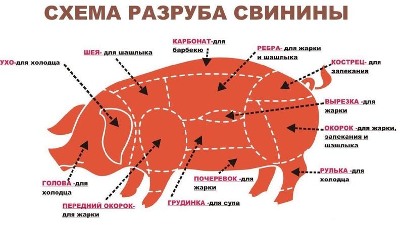 🔪🐷 Разруб свинины Выгодный meat cutting meat butcher 肉 切肉 屠夫 猪肉 牛肉 羊肉 鸡 係食物呀!
