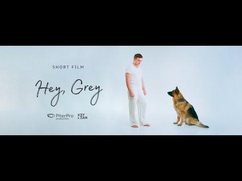 Hey Grey по мотивам рассказа Лии Тимониной Прости меня пес