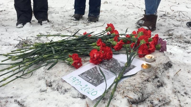 Похороны деревьев в Марфине застройщики и чиновники против людей
