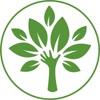 Ekologia Samary-I-Oblasti-V-Nashikh-Rukakh