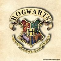 Логотип ХогвартсГейм34