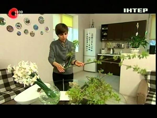 Икебана в домашних условиях - Удачный проект - Интер