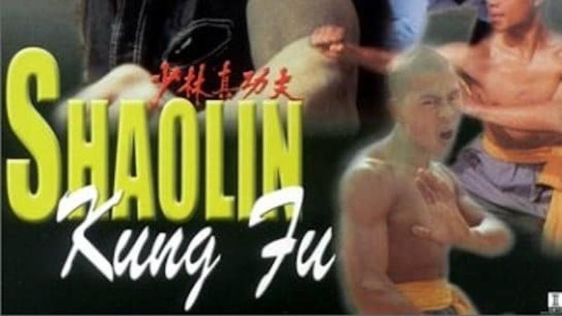 Тайное боевое искусство Шаолиня Shao Lin zhen gong fu 1994
