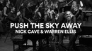 Nick Cave and Warren Ellis - Push the Sky Away (Live at Sydney Opera House)