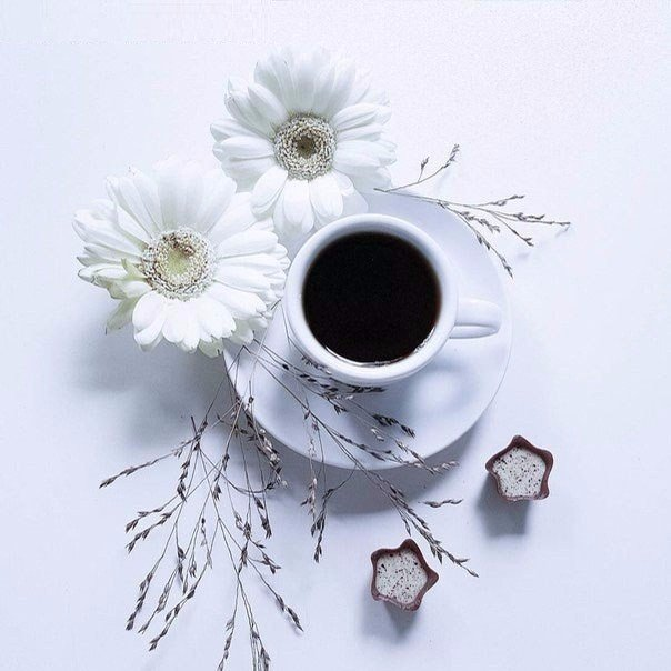 Проснуться утром и взглянуть в окно, За гранью суеты оставить мыслиИ вдруг окажется нелепо и смешноВсе то, что с нами было в прошлой жизниДышать спокойно и ценить, что нам дано,И счастью
