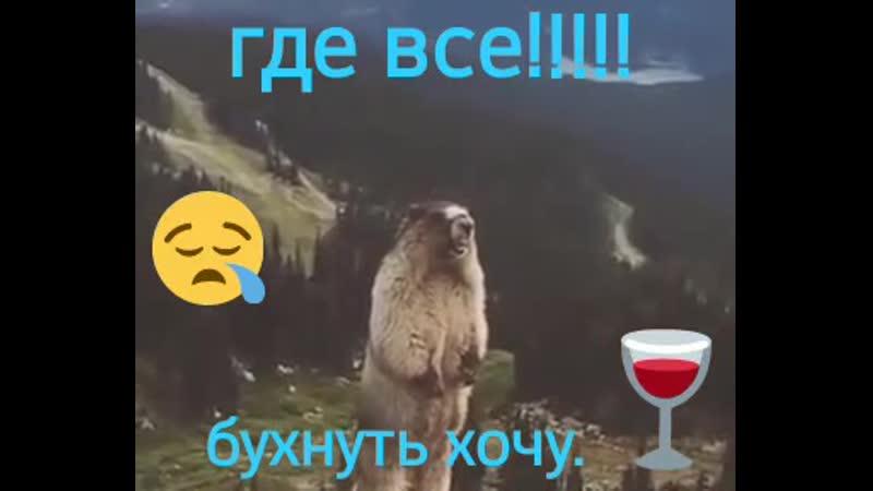 VIDEO 2020 04 05 14 56